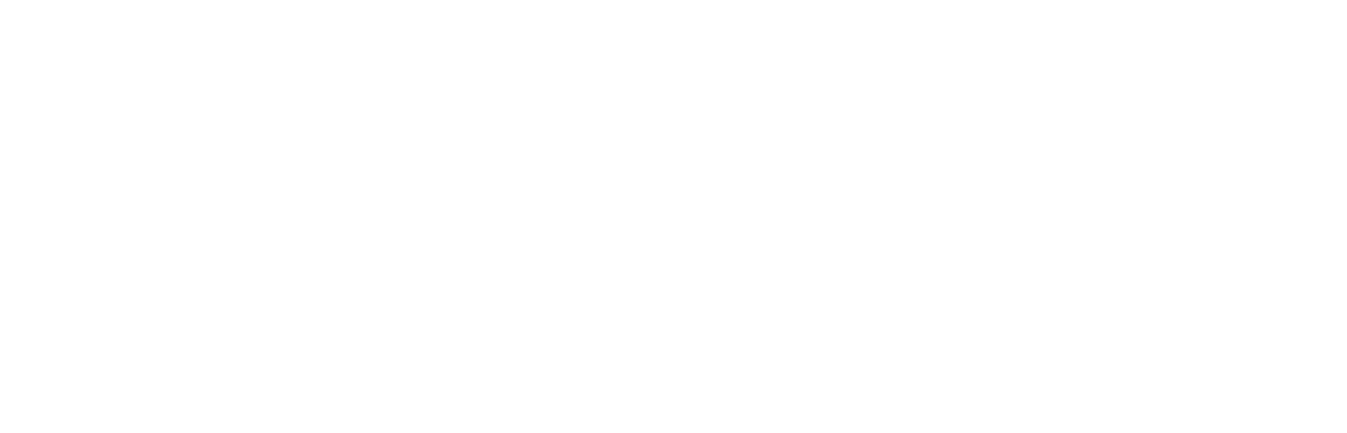 The Shelton Group
